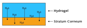 hydrogel-hydration